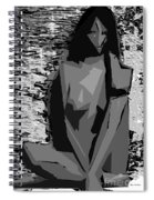 Cubism Series Xvii Spiral Notebook
