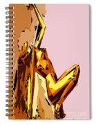 Cubism Series Xxi Spiral Notebook