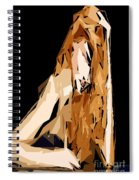 Cubism Series Xxiv Spiral Notebook