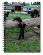 Cubs At The Playground Spiral Notebook