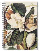 Cuckoo On Magnolia Grandiflora Spiral Notebook