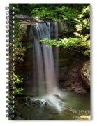 Cucumber Falls Spiral Notebook
