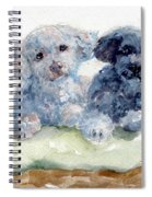 Cuddlies Spiral Notebook