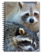Cuddling Spiral Notebook