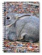 Cuddly Campground Bunny Spiral Notebook