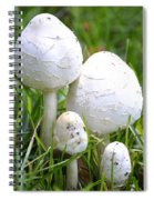 Cumberland Toadstools Spiral Notebook