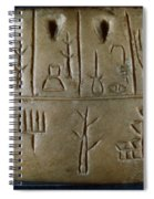 Cuneiform Spiral Notebook