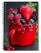 Cup Of Fresh Berries Spiral Notebook