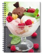 Cup Of Icecream Spiral Notebook