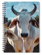 Cupcake Cows Spiral Notebook