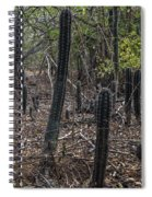 Curacao - Blooming Cacti In The Forest Spiral Notebook