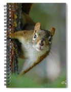 Curious Alaskan Red Squirrel Spiral Notebook