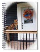 Curious Bengal Cat Spiral Notebook