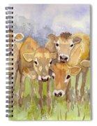 Curious Calves Spiral Notebook