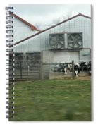Curious Cows Spiral Notebook