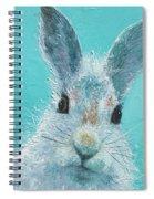 Curious Grey Rabbit Spiral Notebook