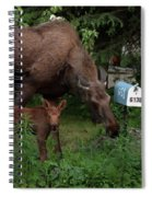 Curious Little One Spiral Notebook