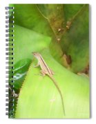 Curious Lizard I Spiral Notebook