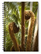 Curled And Delicate Spiral Notebook