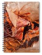 Curled Bark Spiral Notebook