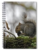 Curled Tail Spiral Notebook