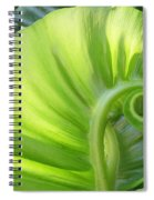Curly Leaf Spiral Notebook