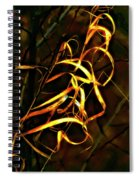 Curly One Spiral Notebook