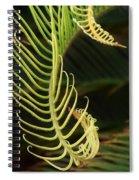 Curly Qs Spiral Notebook