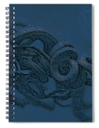 Curly Swirly Spiral Notebook