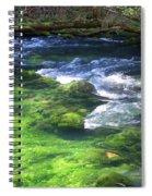Current River 8 Spiral Notebook