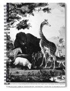 Currier: Adam Spiral Notebook