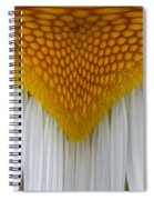 Curtain And Valance Daisy Spiral Notebook