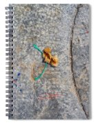 Curve And Counter Curve Spiral Notebook