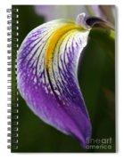 Curve Of An Iris Spiral Notebook