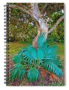 Curves And Fronds Spiral Notebook