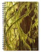 Curves In The Rainforest Spiral Notebook