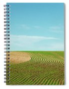 Curvy Rows Spiral Notebook