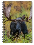 Custer In Autumn Spiral Notebook