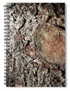 Cut Branch On Tree Trunk Spiral Notebook