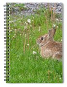 Cute And Fluffy Spiral Notebook