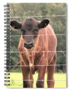 Cute Calf Spiral Notebook