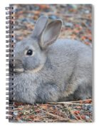 Cute Campground Rabbit Spiral Notebook