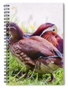 Cute Couple - Mandarin Ducks Spiral Notebook