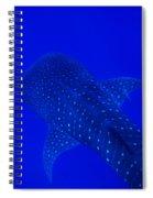 Cute Little Fishy...... Spiral Notebook