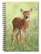 Cute Whitetail Deer Fawn Spiral Notebook