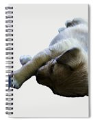 Cutest Puppy Ever Spiral Notebook