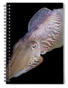 Cuttlefish At Night Spiral Notebook