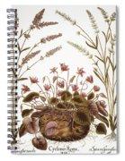 Cyclamen & Lavender, 1613 Spiral Notebook