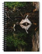 Cyclops In Reflection Spiral Notebook
