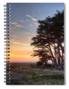 Cypress At Sunset Spiral Notebook